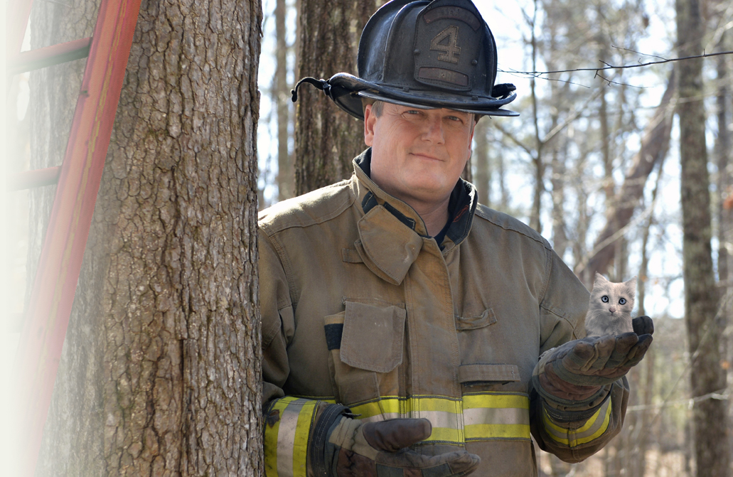 Firefighter rescued kitten from tree - A simple incident that needs to be reported.